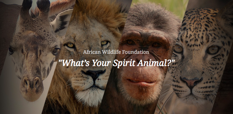African Wildlife Foundation, What's Your Spirit Animal?